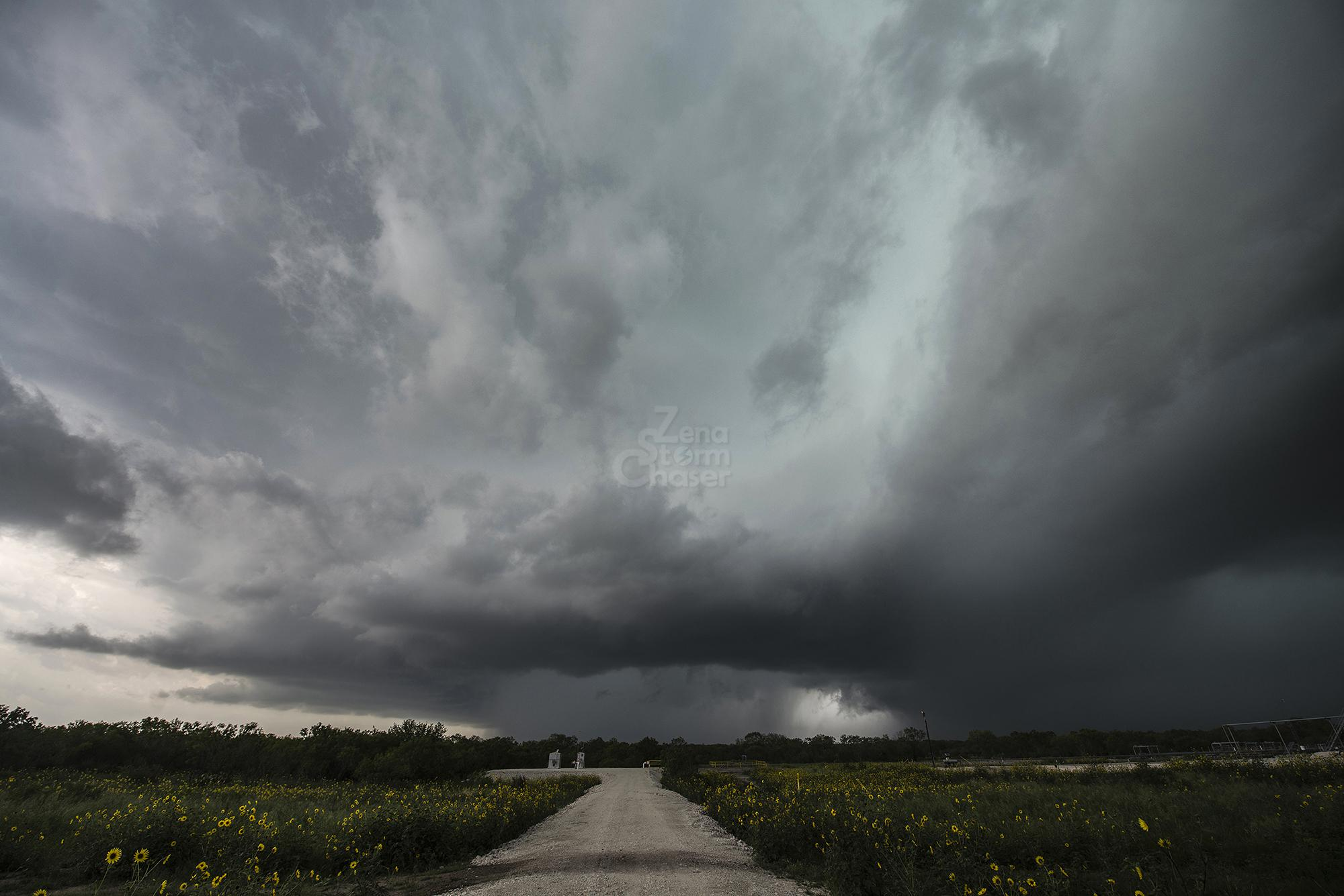 S.Antonio – 27 maggio Texas